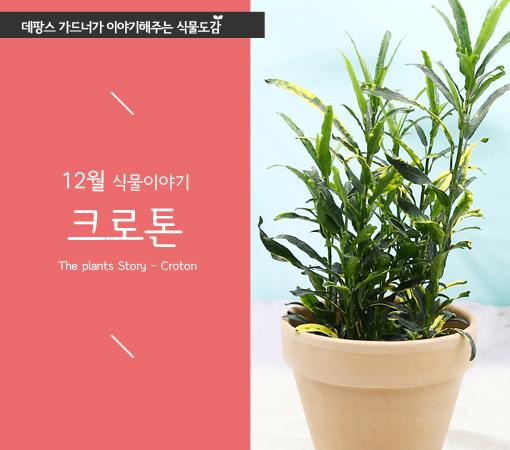 "banner=""main-bestitem"" ◆ 04.메인하단배너_매거진배너"